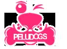 Peludogs Academia & Centro estético Canino